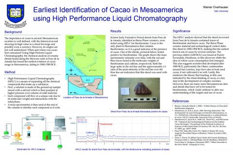 Earliest identification of cacao in Mesoamerica