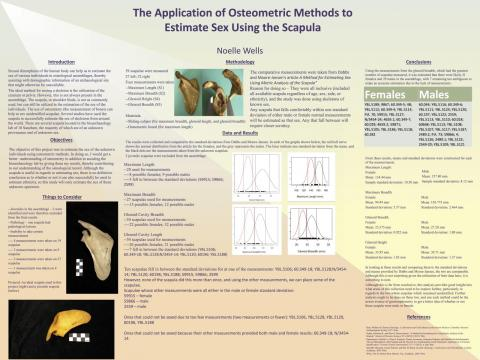 Osteometric methods to estimate sex using the scapula